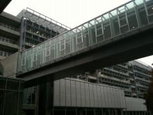 税務大学校